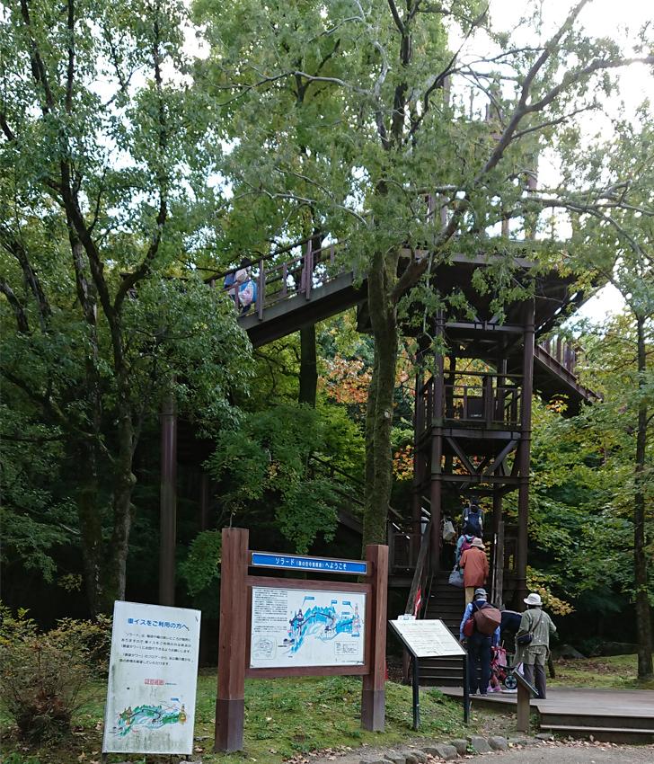 自然文化園のソラード