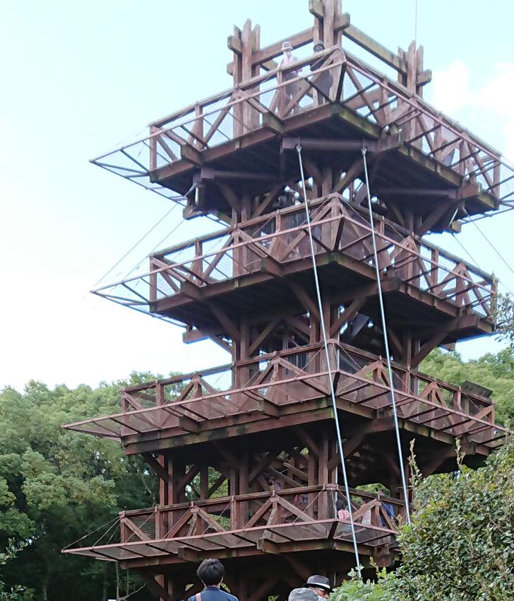 自然文化園のソラードの展望台