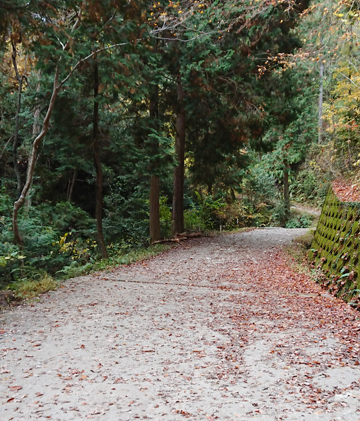 ピトンの小屋から星のブランコまでの道